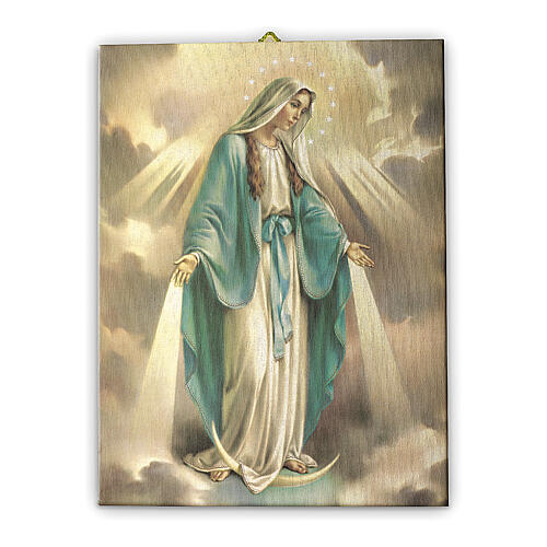Quadro tela Nossa Senhora da Medalha Milagrosa 25x20 cm 1