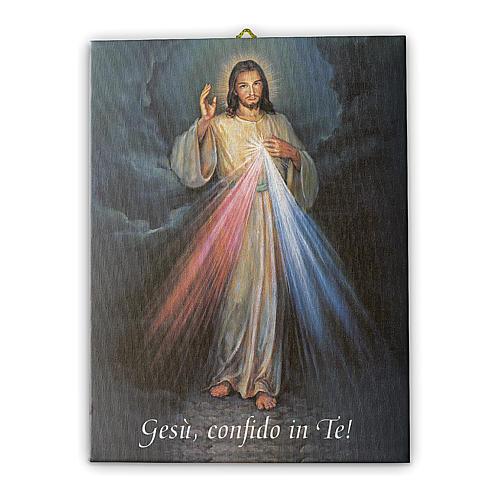Quadro su tela pittorica Gesù Misericordioso 25x20 cm 1