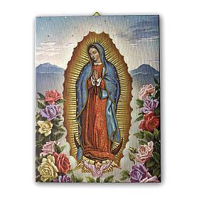 Quadro su tela pittorica Vergine di Guadalupe con le Rose 25x20 cm