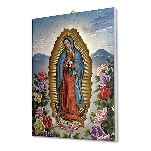 Quadro su tela pittorica Vergine di Guadalupe con le Rose 25x20 cm 2