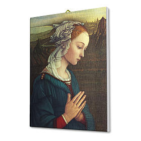 Quadro su tela pittorica Madonna del Lippi 40x30 cm s2