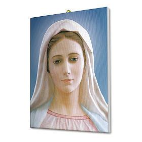 Quadro su tela pittorica Madonna di Medjugorje 25x20 cm s2