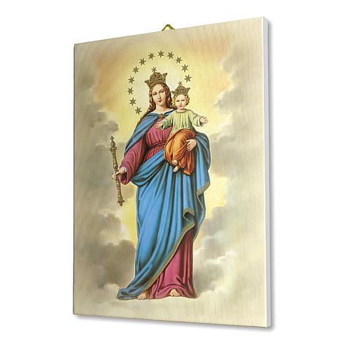 Quadro su tela pittorica Maria Ausiliatrice 25x20 cm 2
