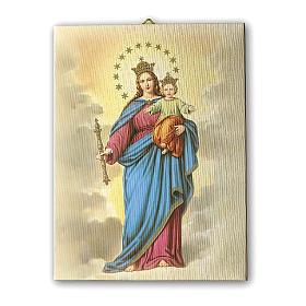 Quadro su tela pittorica Maria Ausiliatrice 40x30 cm s1