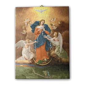 Quadro su tela pittorica Madonna dei Nodi 25x20 cm s1