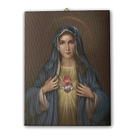 Quadro su tela pittorica Cuore Immacolato di Maria 25x20 cm s1