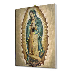 Cuadro sobre tela pictórica Virgen de Guadalupe 25x20 cm s2