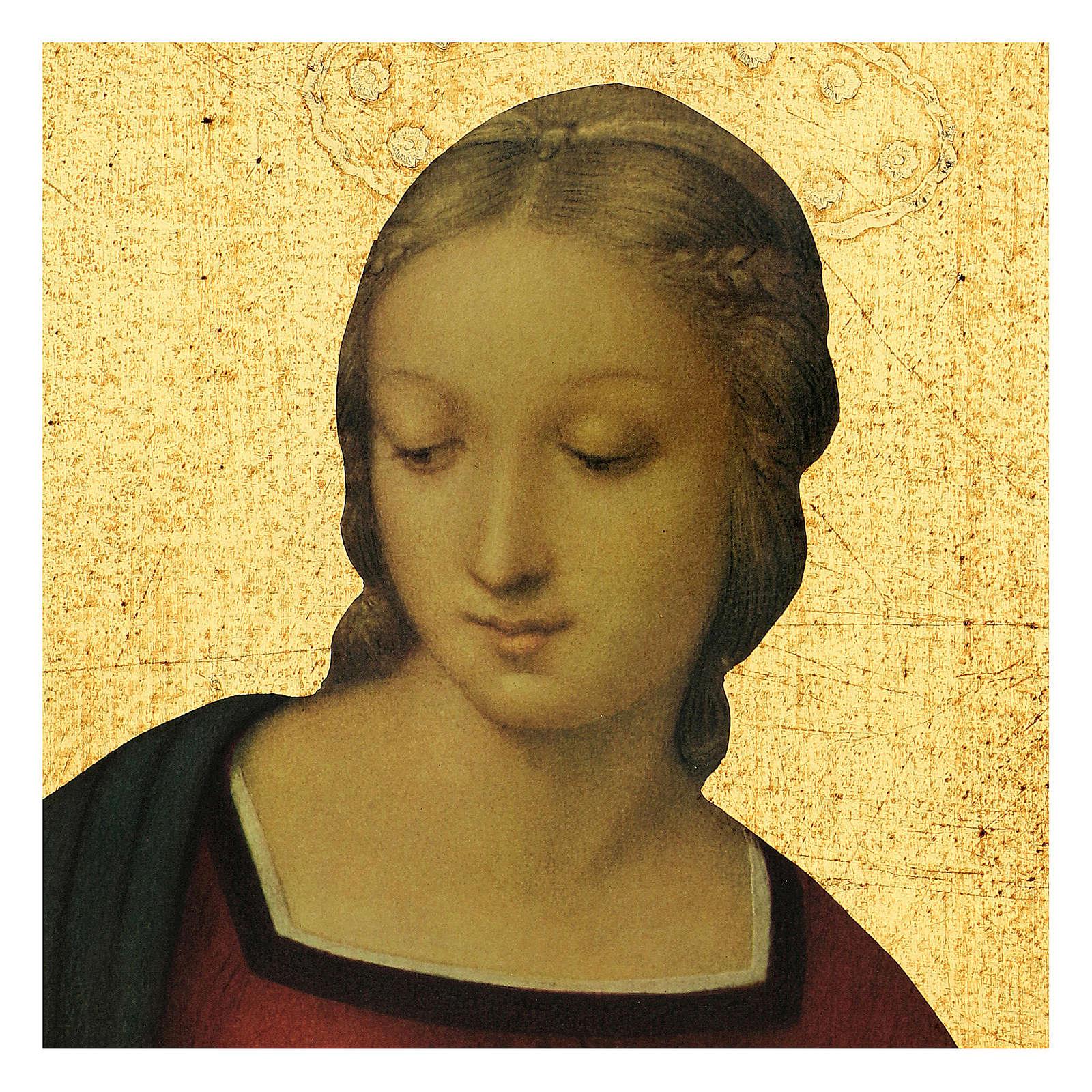 Quadro stampa Madonna del Cardellino 30x25 cm 3