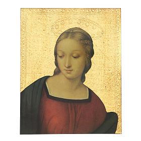 Quadro stampa Madonna del Cardellino 30x25 cm s1