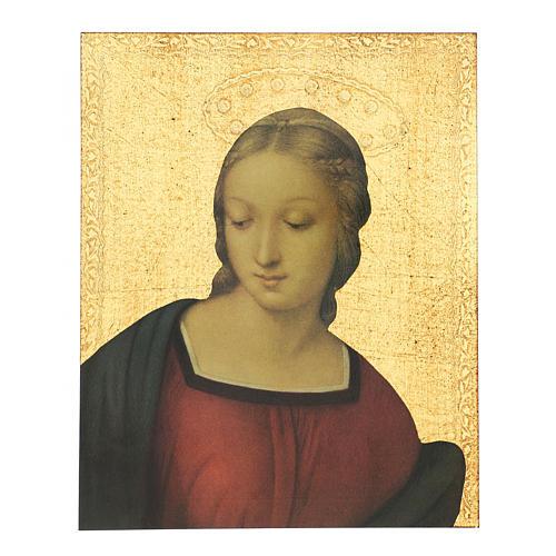 Quadro stampa Madonna del Cardellino 30x25 cm 1