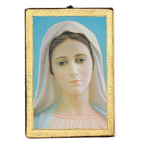 Cuadro impresa Virgen de Medjugorje 25x20 cm s1