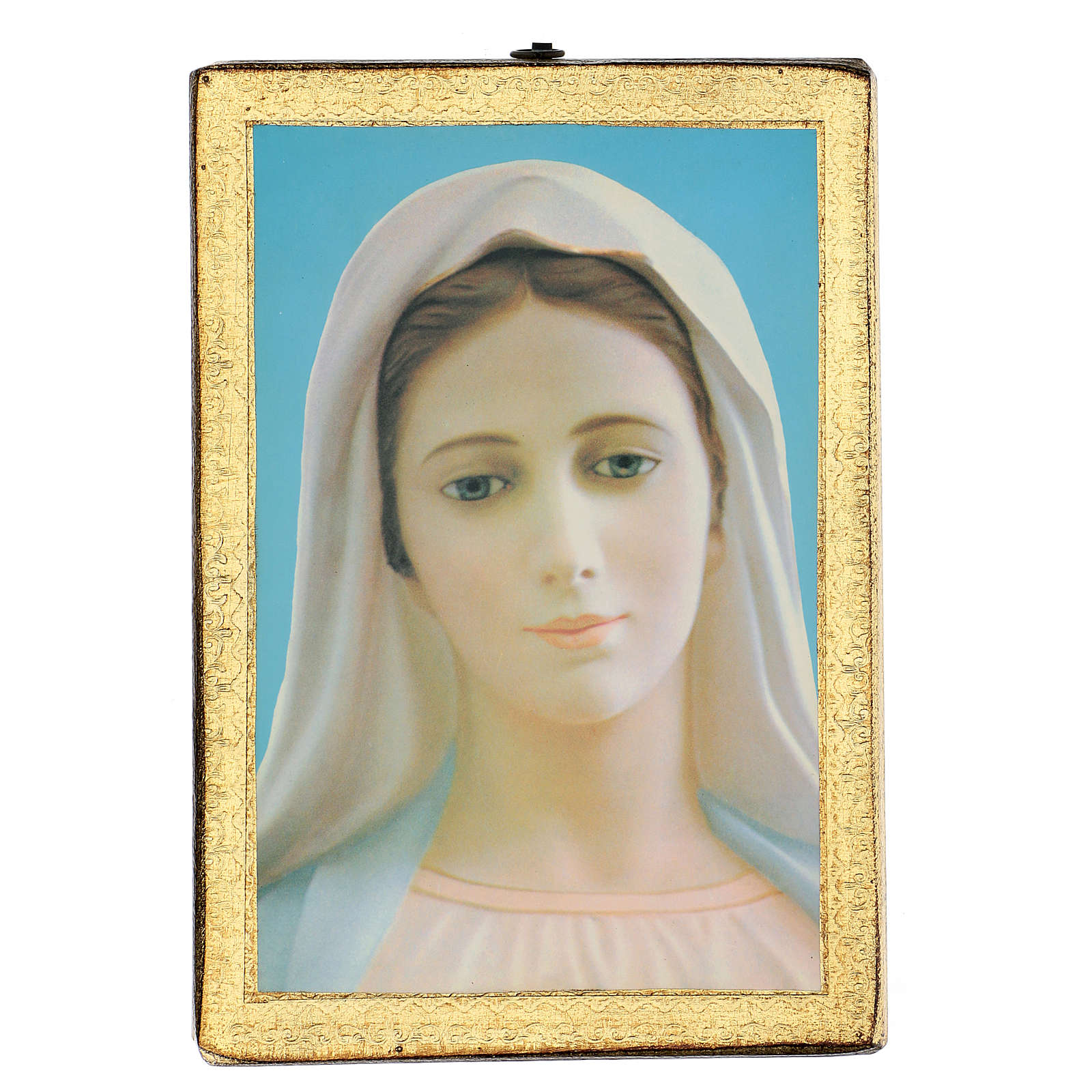 Quadro stampa Madonna di Medjugorie 25x20 cm 3