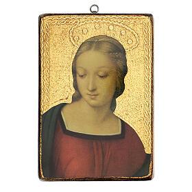 Cuadro impresa Virgen del Jilguero 25x20 cm s1
