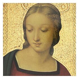 Cuadro impresa Virgen del Jilguero 25x20 cm s4