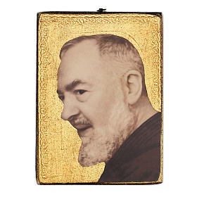 Quadro stampa Padre Pio 25x20 cm s1