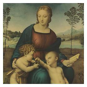 Quadro stampa su legno Madonna del Cardellino 60x44 cm s2