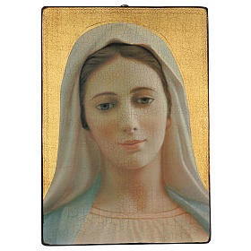 Quadro crettato stampa Madonna Medjugorje 70x50 cm s1