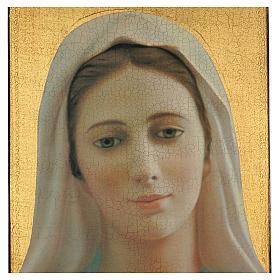 Quadro crettato stampa Madonna Medjugorje 70x50 cm s2
