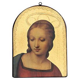 Quadro stampa su legno Madonna del Cardellino 35x25 cm s1