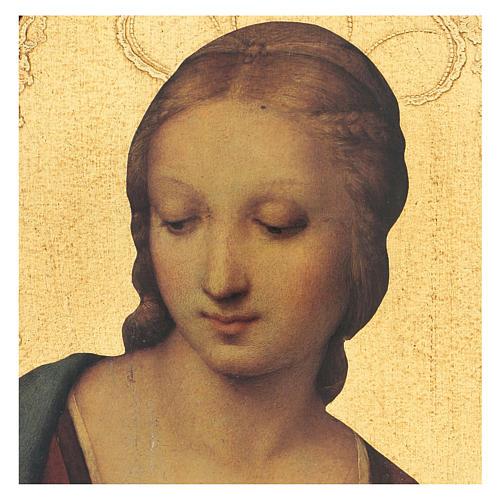 Quadro stampa su legno Madonna del Cardellino 35x25 cm 2