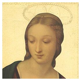 Cuadro impresa madera Virgen del Jilguero 35x25 cm s2