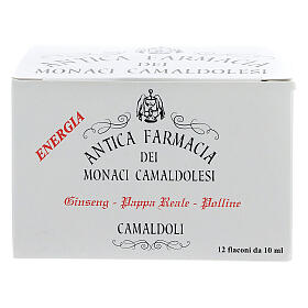 Reinvigorating drink honey, royal jelly, ginseng - Camaldoli s1