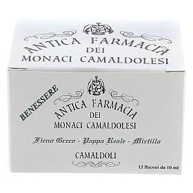 Reinvigorating drink blueberry, royal jelly, fenugreek - Camaldo s1