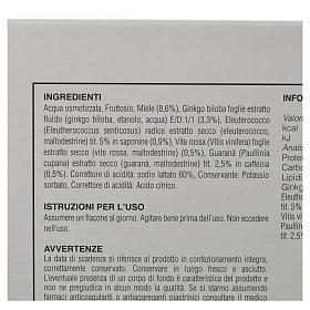 Vitamin supply Ginkgo Biloba, Eleutherococcus, red grapevine and Guarana s2