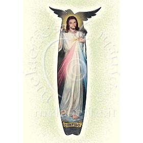 Divine Mercy Card s1