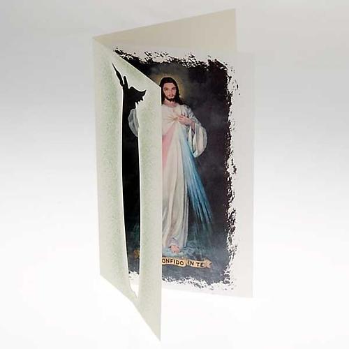 Divine Mercy Card 2