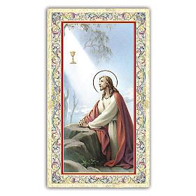 Estampa religiosa Jesús en el huerto de Getzemani 10x5 cm ITA s1
