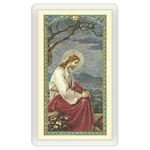 Santino Gesù in preghiera sul Getzemani Atto di Dolore ITA 10x5 1