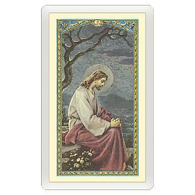 Image dévotion Jésus dans le jardin de Gethsémané Prière pour ceux qui pleurent ITA 10x5 cm s1