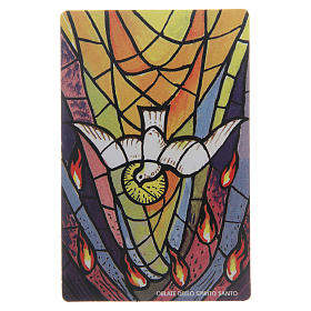 Holy cards: Confirmation Saint Image in plastic 5x10 cm