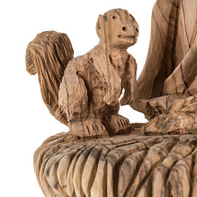 Statua San Francesco legno olivo Terrasanta 30 cm s6