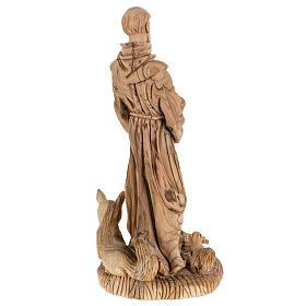 Statua San Francesco legno olivo Terrasanta 30 cm s10