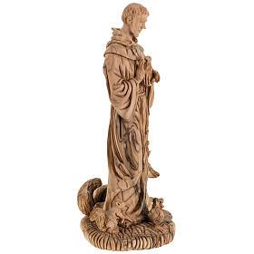 Statua San Francesco legno olivo Terrasanta 30 cm s11