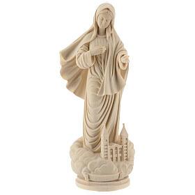 Madonna of Medjugorjie s1