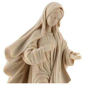 Vierge de Medjugorje s2