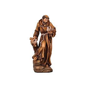 Statua San Francesco colorato realistico s2