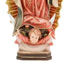 Nuestra Señora de Guadalupe s4