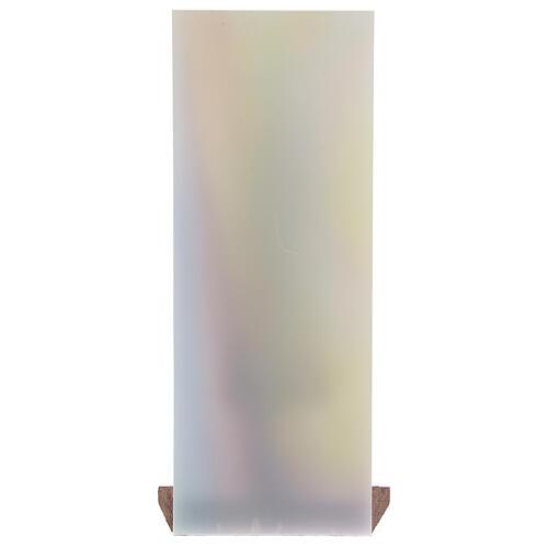 Estatua Virgen con Niño fondo plexiglás coloreado 13 cm 4