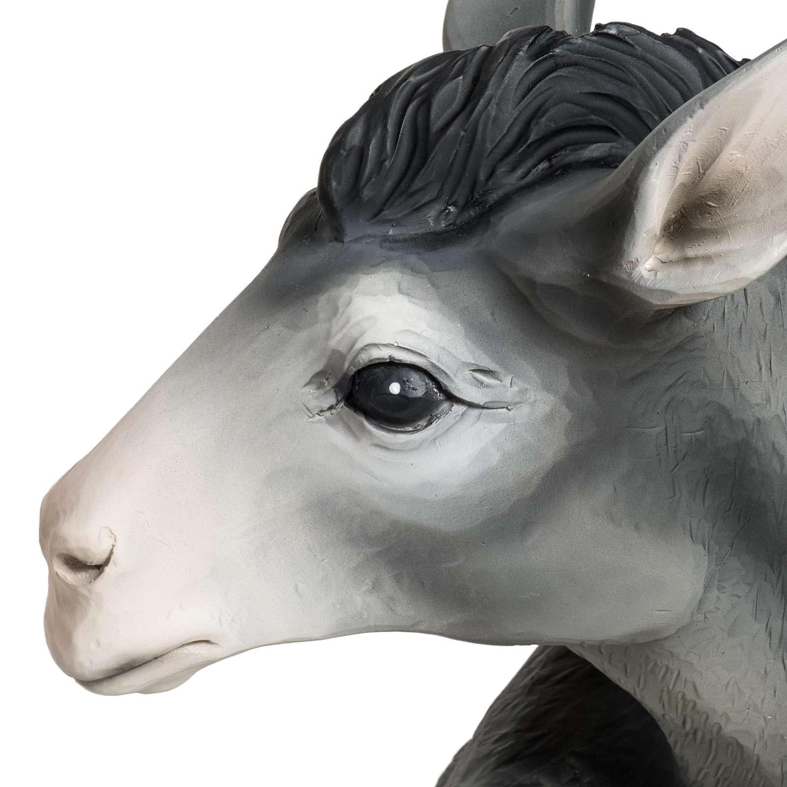 Boeuf et âne crèche Noel fibre de verre 60 cm 4