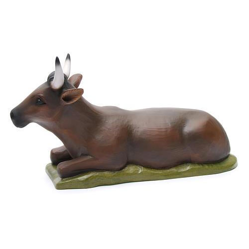 Boeuf et âne fibre de verre peinte crèche 80cm 5