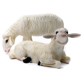 2 Pecore per Presepe di altezza media 80 cm vetroresina dipinta s1
