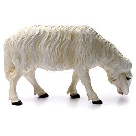 2 Pecore per Presepe di altezza media 80 cm vetroresina dipinta s3