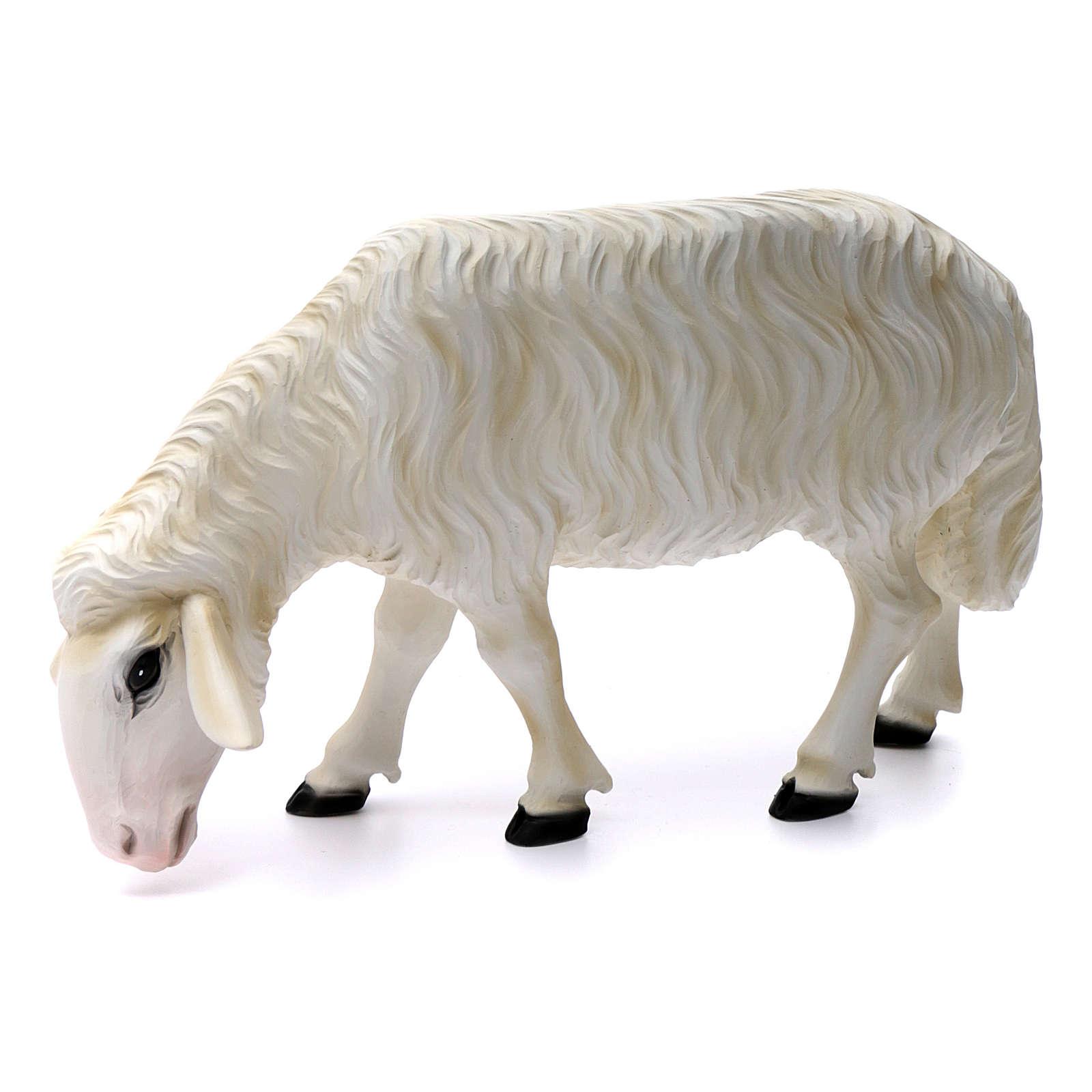 Duas ovelhas para Presépio com figuras de altura média 80 cm fibra de vidro pintada 4