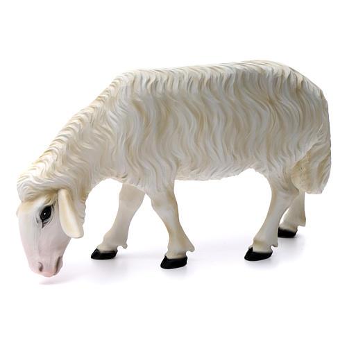 Duas ovelhas para Presépio com figuras de altura média 80 cm fibra de vidro pintada 2