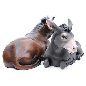 Boeuf et âne en fibre de verre peinte crèche 100 cm POUR EXTÉRIEUR s5