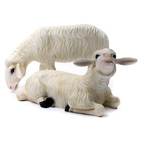 2 ovejas para belén 80 cm fibra de vidrio pintada para EXTERIOR s1